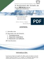 Presentacion Final Reactores Homogeneos