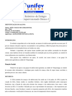 relatorio conselho tutelar.doc