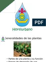 Hidroponia Cva 2