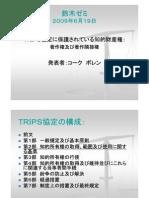 TRIPS協定に保護されている知的財産権