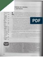 272132813 Tecnicas de Prueba de Software (1)