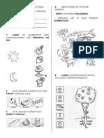2modelo_avaliação de Ciencias II Unidade