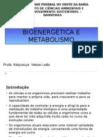 Inrodução Ao Metabolismo