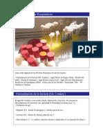 Batería de Pruebas Bioquímicas