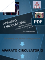 APARATO CIRCULATORIO (1)try