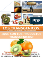Transgenicos Mkt Int.