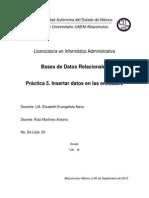Práctica 5. Insertar Datos en Las Entidades_rubi