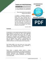 R4 - A Regulamentação Da Profissão Do Assistente Social (3)