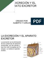 La ExcreciÓn y El Aparato Excretor