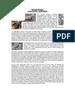 bengal monitor report