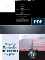 Origen y Formacion Del Petroleo