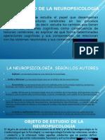 Desarrollo de La Neuropsicología