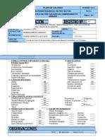 86765872 2 Protocolo Vaciado de Cerco Perimetrico