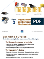 Robbins3 Organizational Culture and the Environment
