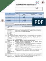 Perfil Practicas pedagogicas