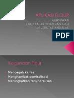 Teknik Aplikasi Flour