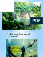 AREAS PROTEGIDAS.pptx