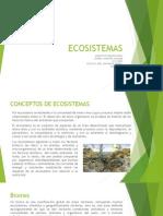 Ecosistemas y papel del arquitecto