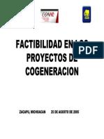 FACTIBILIDAD EN LOS  PROYECTOS DE  COGENERACION