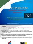 Fuel of Sewage Sludge