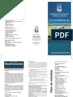 Gastronomia Palenque 2015