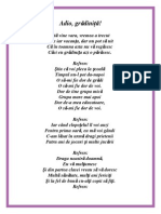 Adio grădiniță! (1).pdf