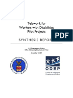 Tele Work Synthesis Report
