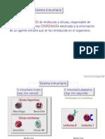 Inmunología introduccion