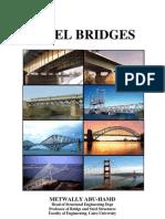 Steel Bridges by Metwally Abu-Hamd