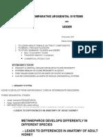 Female Ug and Udder 2015_outline