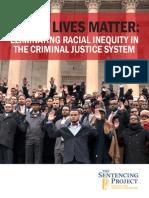 BLM Black Lives Matter.sentencing Guidelines-PDF