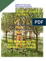 Documento Básico Para El Examen de Regencia