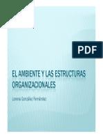 El Ambiente y Las Estructuras Organizacionales A