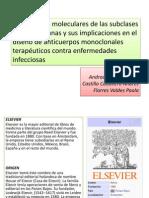 Seminario 4 1 Imprimir