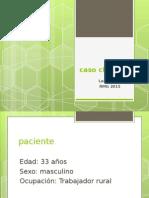 DBT 1.5  LEILA PUZIO. MD