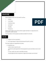 Marine Written Report