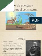 Energia en Los Ecosistemas