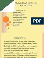 Metabolisme Lipid, Kh, Dan Protein