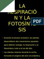 Diapositiva respiración