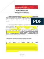 Acta Constitutiva (Sólo Para Simuladores)