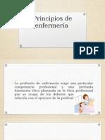 Principios de Enfermería Salud Comunitaria