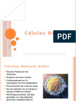 Células Natural Killer