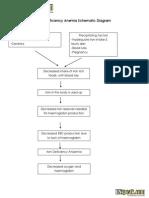 Iron Deficiency Anemia Schematic Diagram