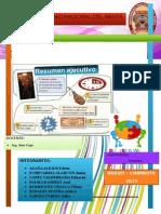 Resumen Ejecutivo Informe