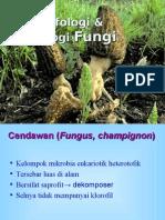 Morfologi & Fisiologi Fungi02.ppt