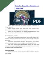 Pengaruh Serotonin Dan Melatonin (Tugas Jiwa)