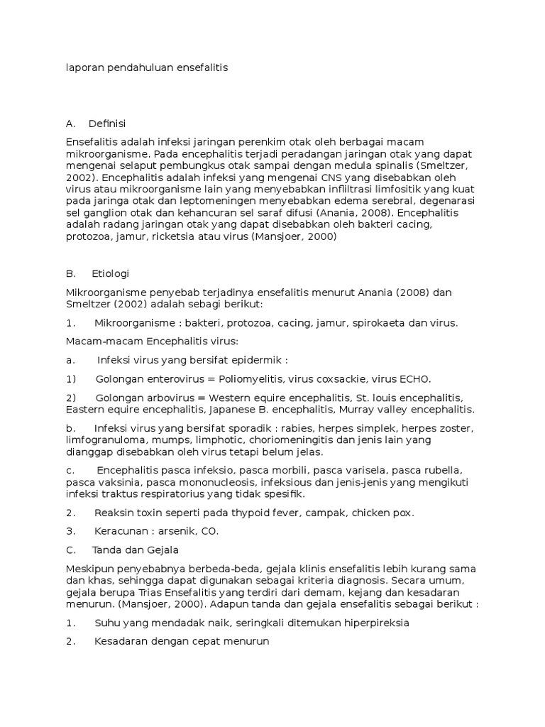 Laporan Pendahuluan Ensefalitis Docx