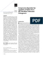 Compression fibroblasts PDL