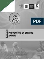 Prevencion en Sanidad Animal