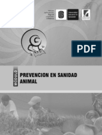 Prevencion en Sanidad Animal
